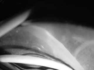 Voyeurcam-bridgetleewalters-02